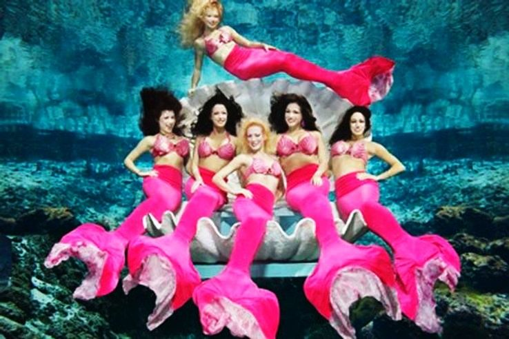 Mermaids Coming To Life In This Spectacular Mermaid Show