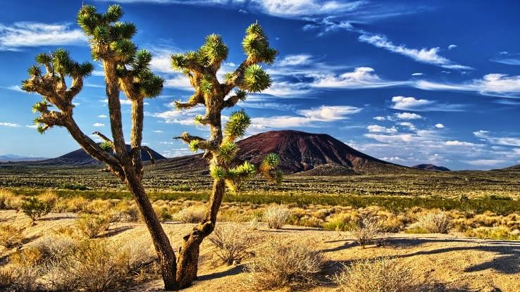 10 Most Spectacular Deserts Across The World Hello Travel Buzz