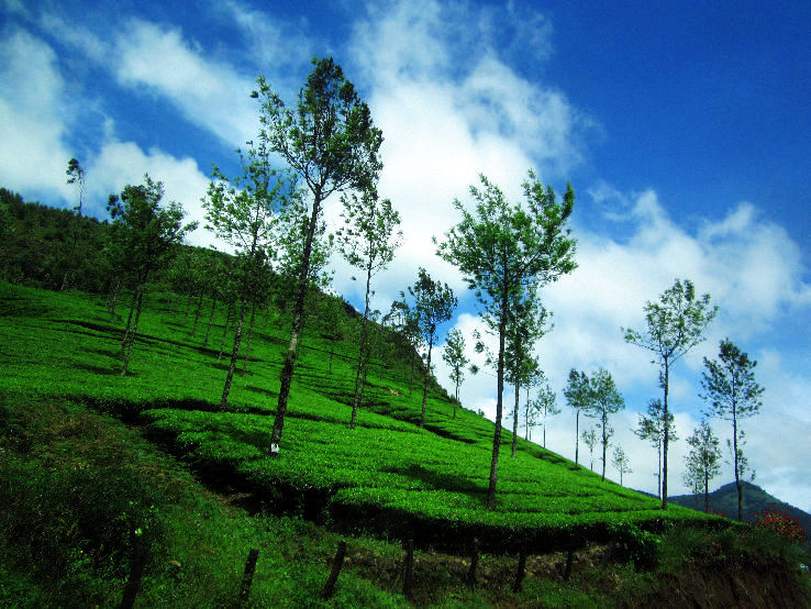 Top 7 Hill stations in Kerala