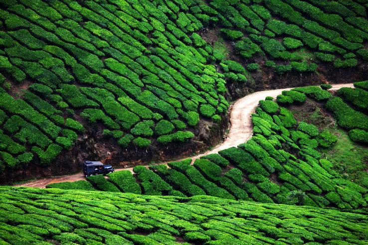 Kerala Most Charming Hill Destinations