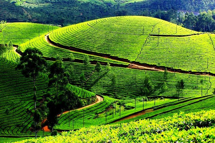 Places You Can Enjoy In Economic Budget In India