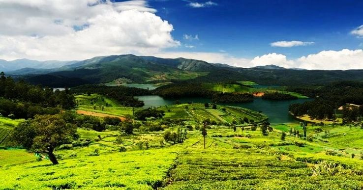 Move To Ooty To Take A Break This Summer
