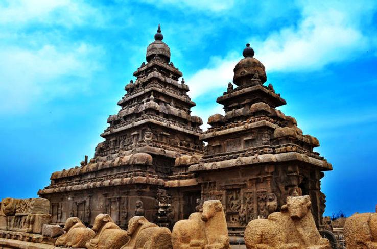 private-cultural-tour-day-trip-to-mahabalipuram-and-dakshinachitra-in-chennai-117273_1464599085u80.jpg