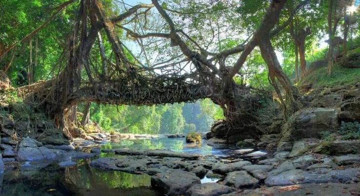 Allure The Beauty Of Shillong, The Scotland Of India