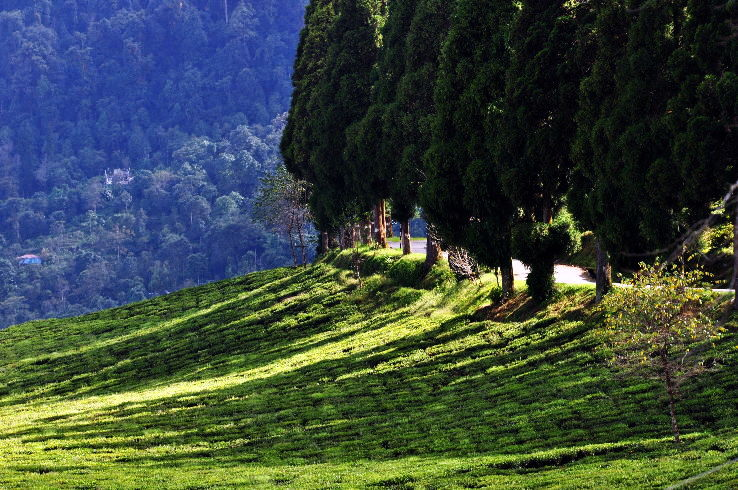 10 Popular Short Treks in Sikkim
