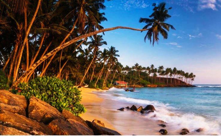 5 Facts About Sri Lanka Beaches That You Must Know Before You Plan Your Next Visit