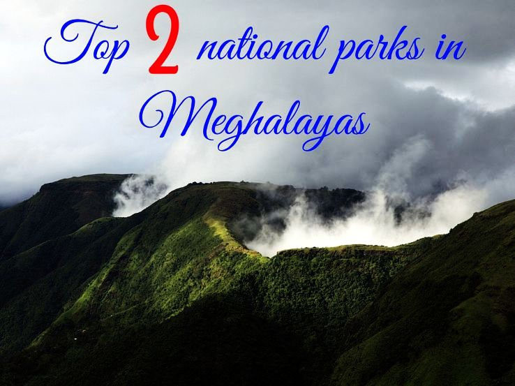 Top 2 national parks in Meghalayas