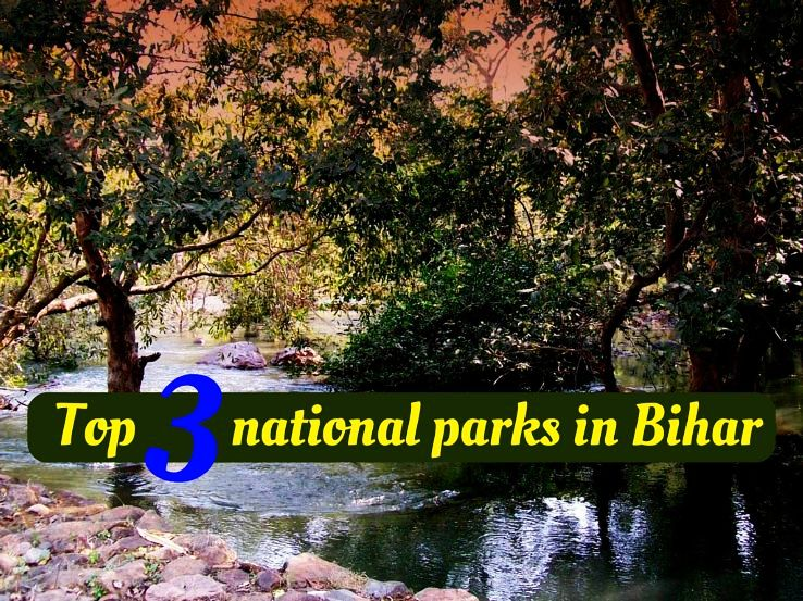 Top 3 national parks in Bihar