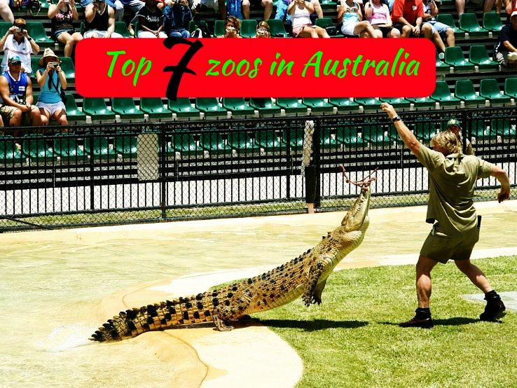 Top 7 zoos in Australia
