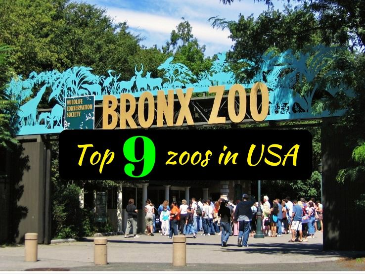Top 9 zoos in USA