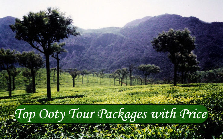 Top Ooty Tour Packages with Price