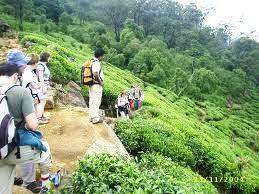 Adventurous activities in Sri Lanka