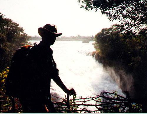 Get Cajoled By Wildlife Sanctuaries in Zimbabwe