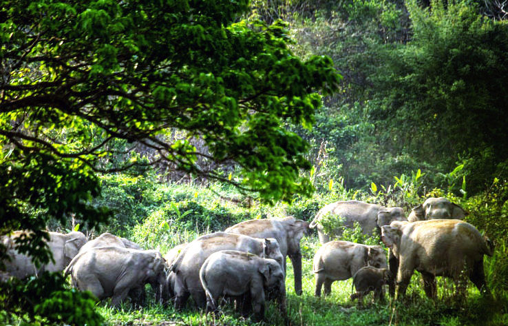 Tourist Places In West Bengal For 1 2 Days Hello Travel Buzz