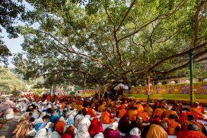 Enlightment At Bodhi Tree