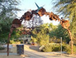 Desert Breeze Hummingbird Habitat