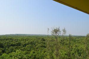 Bakkhali Watch Tower