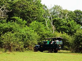Bhadra Wildlife Sanctuary Jeep Safari