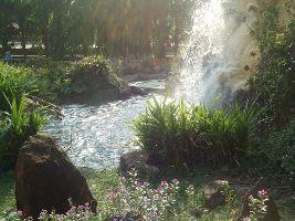 Hirva Van Garden