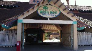 Wildlife World Zoo Litchfield Park