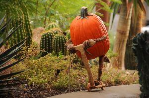 Enchanted Pumpkin Garden