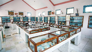 Shell Museums