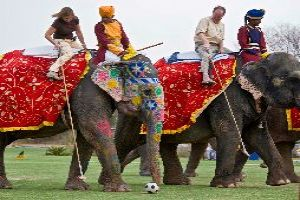 Play Elephant Polo In Rajasthan
