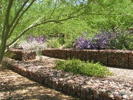 The Scottsdale Xeriscape Garden