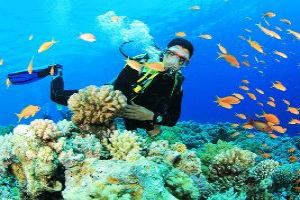 Go Scuba Diving In Havelock Islands