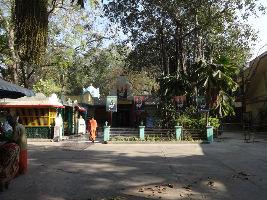 Seshadri Swamigal Ashram