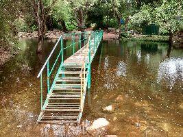 Tada Falls / Ubbalamadugu Falls