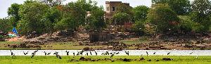 Pocharam Sanctuary