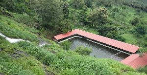 Kumaragiri Farm & Nature Camp