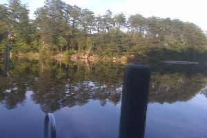Go fishing in the Solomons Island Maryland