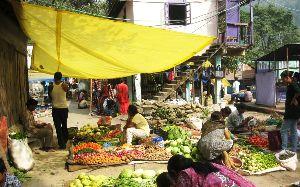 Teesta Bazar