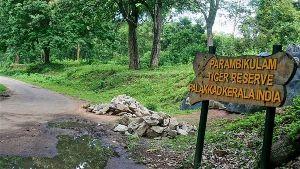 Reserve Forest Sanctuary