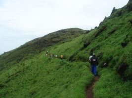Trek To Kemmangundi Peak
