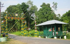 The Buxa Tiger Reserve