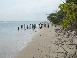 Kurusadai Island