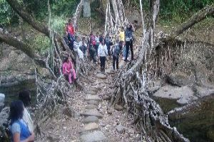 Walk Across The Living Root Bridge