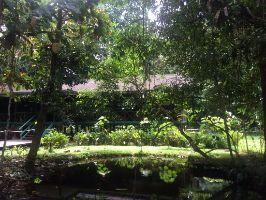 Mulu World Heritage Area