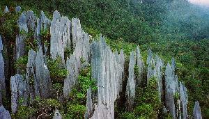 The Pinnacles Trail
