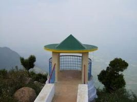 Selur View Point