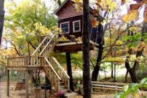 Stay in Tree house