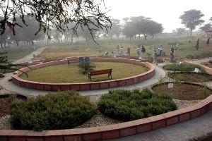 Ch. Surender Singh Memorial Herbal Park