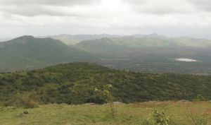 Jogimatti Hill Station And Forest Reserve