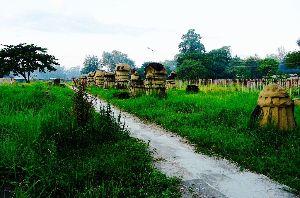 Khekiho Memorial Park