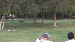 Hisar Town Park