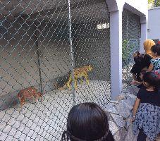 Gulbarga Zoo