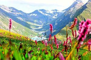 Hemkund Trek With Valley Of Flowers